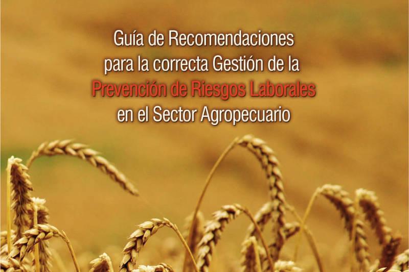Imagen de la guía de elección de la modalidad preventiva, contratación y seguimiento del SPA